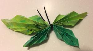Butterflies - Sue Schroder's